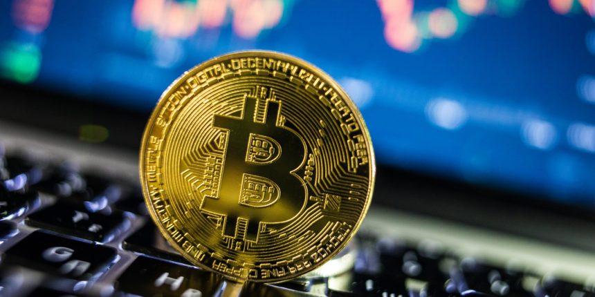 motore di ricerca bitcoin